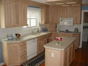 Lowes unfinished cabinets small space traditional for Kitchen cabinets lowes with red rose wall art