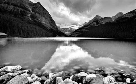 beautiful nature hd wallpaper black  white