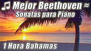 Musica Clasica Para El Estudio De Mejores Canciones Estudio Beethoven Sonatas Piano Instrumental