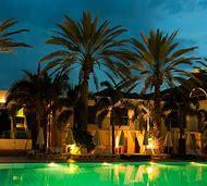 Pools with Palm Trees Night