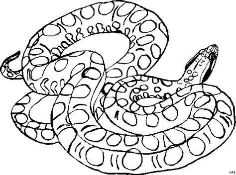 Schlange Gefleckt Ausmalbild & Malvorlage (tiere