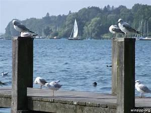 Little People Wohnhaus : 152 best images about bavarian lakes challenge on ~ Lizthompson.info Haus und Dekorationen