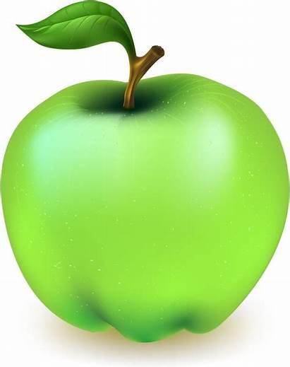 Apple Vector Cartoon Clip Fruit Svg 20mb