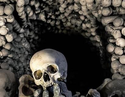 Skull Bones Wallpapers Desktop Screen Background Backgrounds