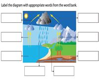 The Water Cycle Diagram Pdf by Water Cycle Worksheets