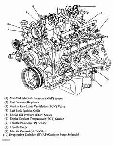 Evaporative Emission Control System Purge Control Valve Circuit Shorted On A 2006 Chevy