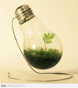 Lampen Für Pflanzen : lampen f r pflanzen frisch lampe ~ A.2002-acura-tl-radio.info Haus und Dekorationen