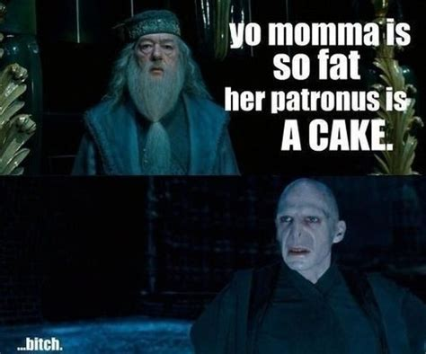 Harry Potter Funny Memes - 27 pictures only quot harry potter quot fans will think are funny