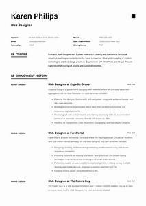 19 Free Web Designer Resume Examples  U0026 Guide