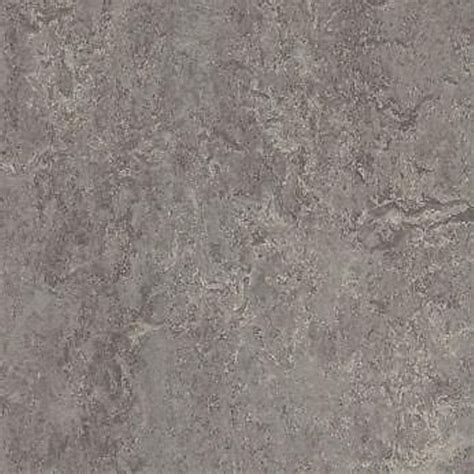 linoleum flooring ebay forbo marmoleum real linoleum sheet flooring natural lino eiger 2629 ebay