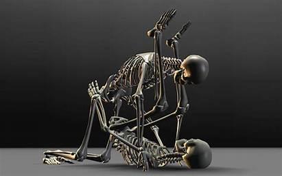 3d Wallpapers Skeleton Desktop Cartoon Funny Backgrounds