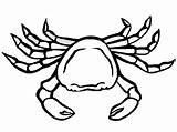 Crab Coloring Printable Crabs sketch template