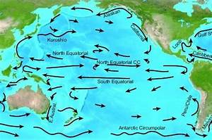 Can Ocean Currents Transport Radioactive Materials To The ...