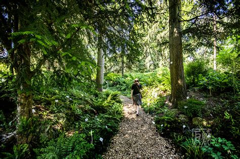 Botanischer Garten Heidelberg Pflanzenbörse by Botanischer Garten Heidelberg Neckarweb