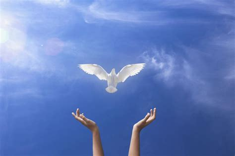 Novena To The Holy Ghost (for The Gifts Of The Spirit