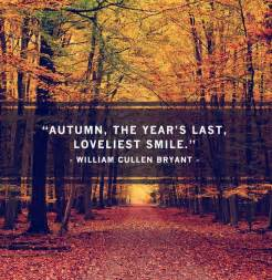 best fall quotes funny fall quotes autumn quotesgram