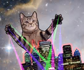 laser cat gifs | WiffleGif
