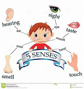 image of kids five senses - - Yahoo Image Search Results ...
