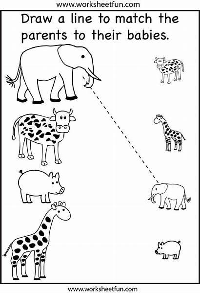 Preschool Worksheets Animals Printable Printablee Tracing Via