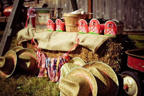 Country Fair Birthday Party {guest Feature} Celebrations
