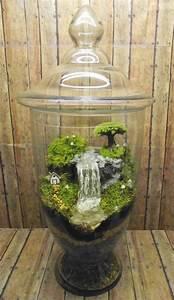 Wasserfall Brunnen Selber Bauen : terrarium selbst bauen oder wie erstellt man eine mini pflanzenwelt ~ Buech-reservation.com Haus und Dekorationen