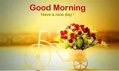 Morning Latest Hindi
