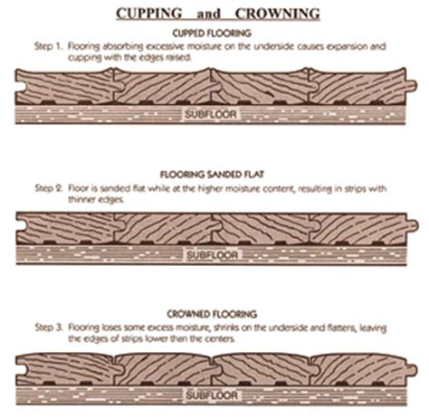 hardwood floor cupping and crowning solid wood floor reason to swell how to build a house