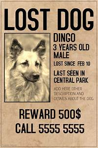 Missing Reward Poster Template  Missing Poster Template Missing Pet Tips  40 Lost Pet Flyers