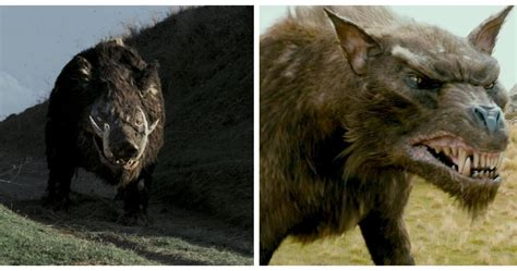 Lord of the Rings: 10 Coolest Creatures You Forgot About, Ranked
