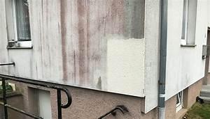 Rauchgeruch Entfernen Wohnung Schnell : schimmel fassade entfernen elegant with schimmel fassade entfernen top flechten an der fassade ~ Watch28wear.com Haus und Dekorationen