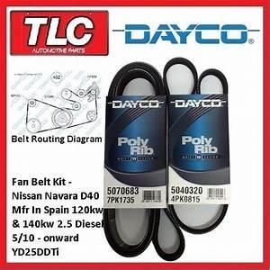 Dayco Fan Belt Kit  2 Belts  Navara D40 Spain 2 5 Diesel