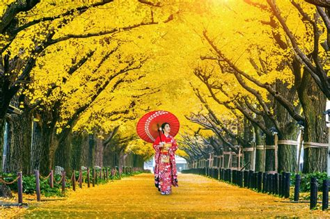 9 Places to Visit in Tokyo That'll Take Your Breath Away - AssistAnt | Global VIP Travel and ...