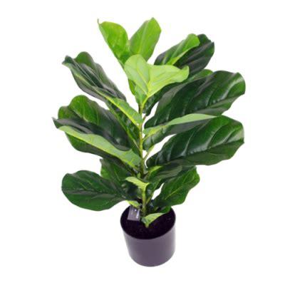 ต้นไม้ประดิษฐ์ ไทรใบสัก 70cm