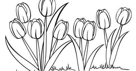 gambar bunga untuk lomba mewarnai