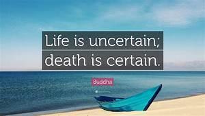 In Life : buddha quote life is uncertain death is certain 12 ~ Nature-et-papiers.com Idées de Décoration