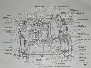 1996 98 Ford Mustang Engine Diagram