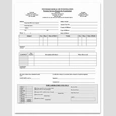 Crime Scene Worksheets — Tbi Learn