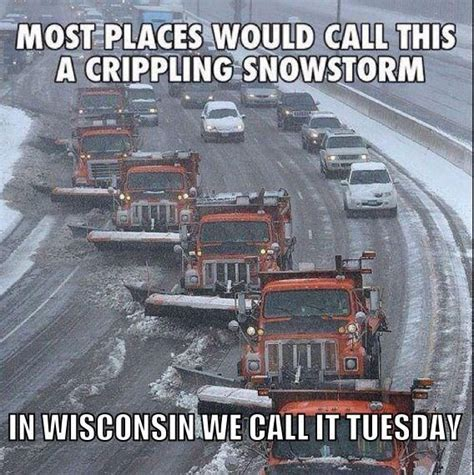 Wisconsin Meme - 94 best wisconsin funnies images on pinterest wisconsin funny animais and animales