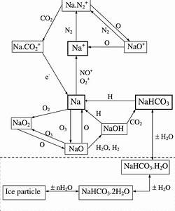 Schematic Drawing Of The Important Chemistry Of Sodium In