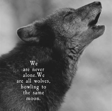 Quote Wolf Pack Code
