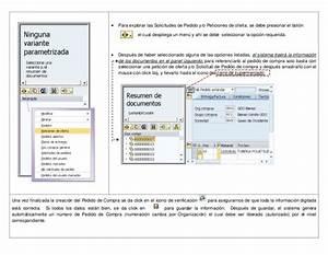 Manual Sap Libre