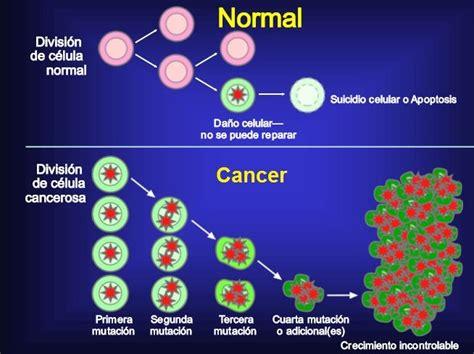 q es el cancer en general qque es el cancer q es el cancer
