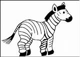 Zebra Coloring Animal Printable Animals Zoo Template Finch Worksheet Colouring Templates Biology Skin Gambar Drawing Mewarnai Structure Cell Drawings Ox4 sketch template