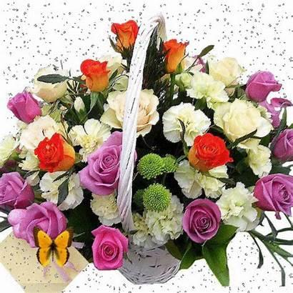 Flores Florales Arreglos Encontradas Gifs Night Feliz