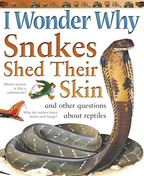 When Do Pythons Shed Their Skin by I Why Snakes Shed Their Skin Scholastic Club
