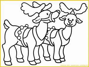 Nom Des Rennes Du Pere Noel : coloriage de rennes du pere noel a imprimer ~ Medecine-chirurgie-esthetiques.com Avis de Voitures