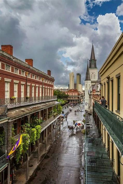 love the view new orleans louisiana repinned by