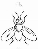 Fly Coloring Pages Sheets Printable Insect Preschool Guy Twistynoodle Flies Outline Colouring Template Tracing Cartoon Clipart Worksheets Clip Animals Outlines sketch template