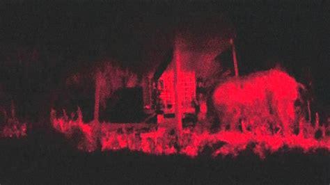 Hog Lights by 240 Boar At With Sniper Hog Lights