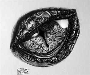 Dragon Eye Drawing by LethalChris on DeviantArt